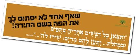 נשים ביהדות סטיקר